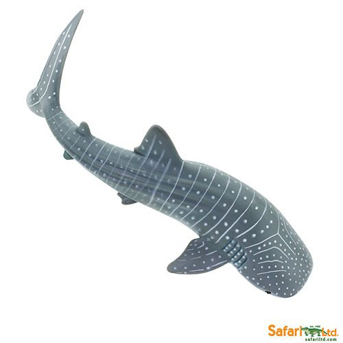 Whale Shark Toys : Safari ltd whale shark wild sea life
